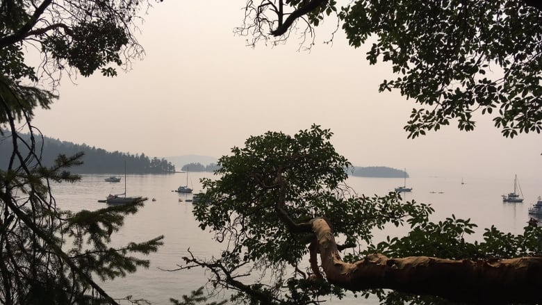 Smoke lingers over parts of B C , some relief for South