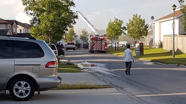 Firefighters extinguished a fire at a house on Danube Drive Friday evening.