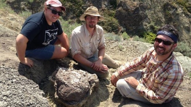 Royal Ontario Museum paleontologists — Victoria Arbour, left, Cary Woodruff, centre, and David Evans, right — uncovered an intact Euoplocephalus skull while on a dig in Southern Alberta on Sunday.