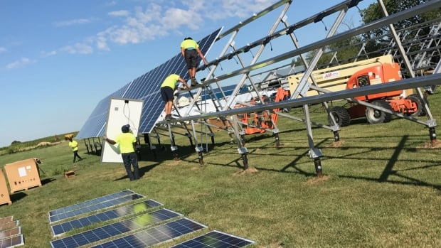 Workers install solar panels at a dairy farm in Otterburne, Man. The firm doing the installation says when it's complete, it will be the biggest solar project in the province.
