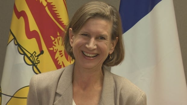 New Brunswick NDP Leader Jennifer McKenzie announced Saturday she will be running in the Saint John Harbour riding in the next provincial election, a riding not held by the party since former leader Elizabeth Weir resigned in 2005.