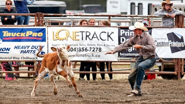 "A competitor ropes a calf at the 2016 Chilliwack rodeo in one of many images used in a Vancouver Humane Society campaign that called calf roping and steer wrestling the ""worst rodeo events"" for animal welfare."