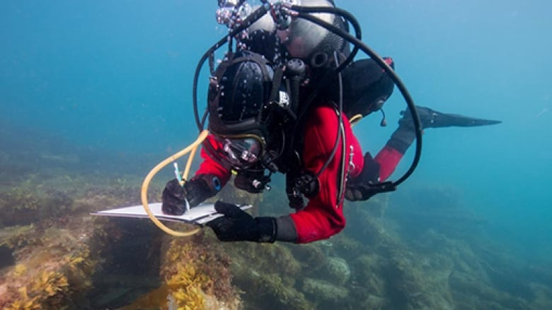 Talks with Britain drag on over Franklin wreck artifacts