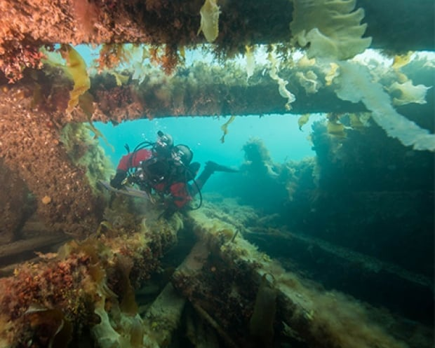 'Extremely complex': How the hunt for clues in the Franklin shipwreck mystery is changing gears