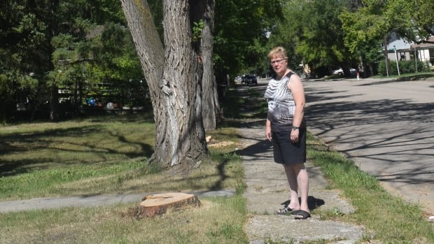 Kamsack Mayor Nancy Brunt stands by the stump of one of the elm trees that had to be cut down. The tree next to it is also likely to be cut down.
