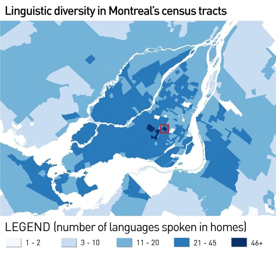 language diversity montreal