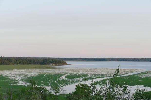 Lone Island Lake - Great Water Gathering
