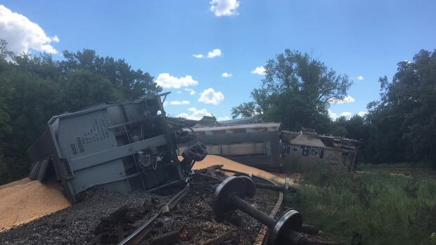 About 20 hopper cars full of corn jumped the tracks near Dominion City, Man., on Friday.