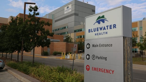 Sarnia police have charged a nurse for allegedly stealing fentanyl and morphine from Bluewater Health hospital.