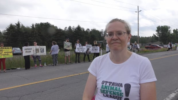 Michele Thorn ottawa animal defense league