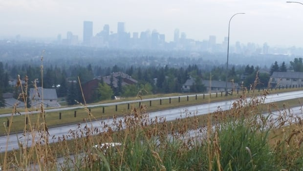 Scientists worldwide are urging actions to reduce pollution and other human activities that negatively impact the environment. Pictured is a view of Calgary filled with smoke from the B.C. wildfires.