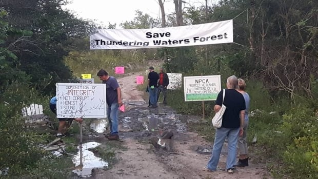 A group of environmentalists and Indigenous activists are camping this week to protest a planned development in the Thundering Waters Forest.