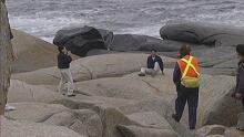 Peggys Cove Rock Patrol