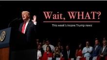 Headline Trump