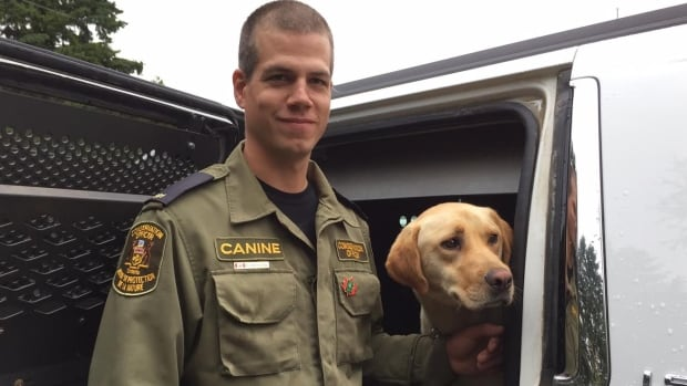 Conservation officer Andy Heerschap and his dog Rex are based in Thunder Bay, Ont. The dogs are comfortable riding in all types of vehicles, including boats, helicopters and  snow machines.