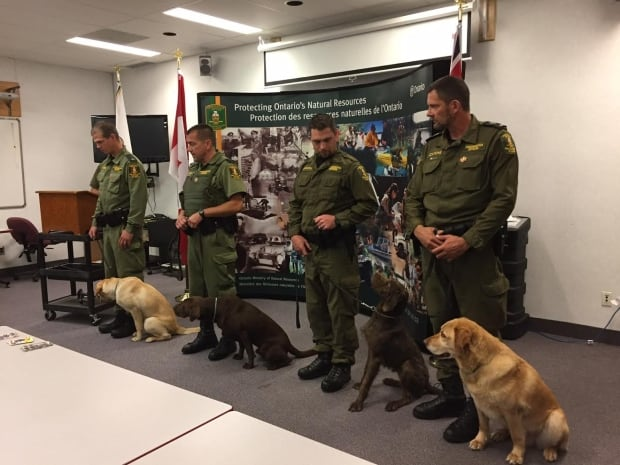 canine conservation officers