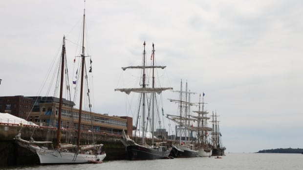 Five of the 11 tall ships that arrived in Port Saint John to kick off the Festival of Sail Friday.