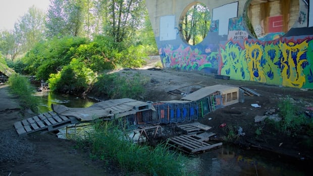 Nearly a dozen shopping carts were lined together underneath a bridge in Abbotsford, B.C., to create a bridge for homeless people who camp in the area.