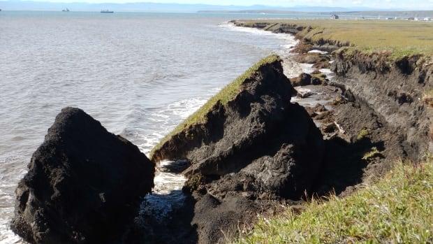 Erosion near the Pauline Cove settlement on Herschel Island.
