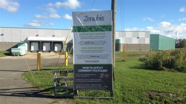 Zenabis bought a warehouse in Atholville, N.B., in 2014 to turn into a marijuana production facility.
