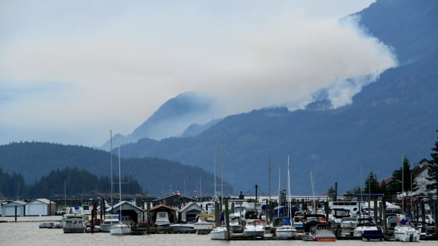 A second wildfire near Harrison Lake, B.C. was spotted around 8:30 p.m. on Saturday. Officials say it was likely human-caused.