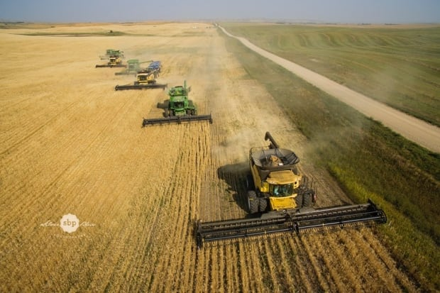 Farm it Forward overhead harvest