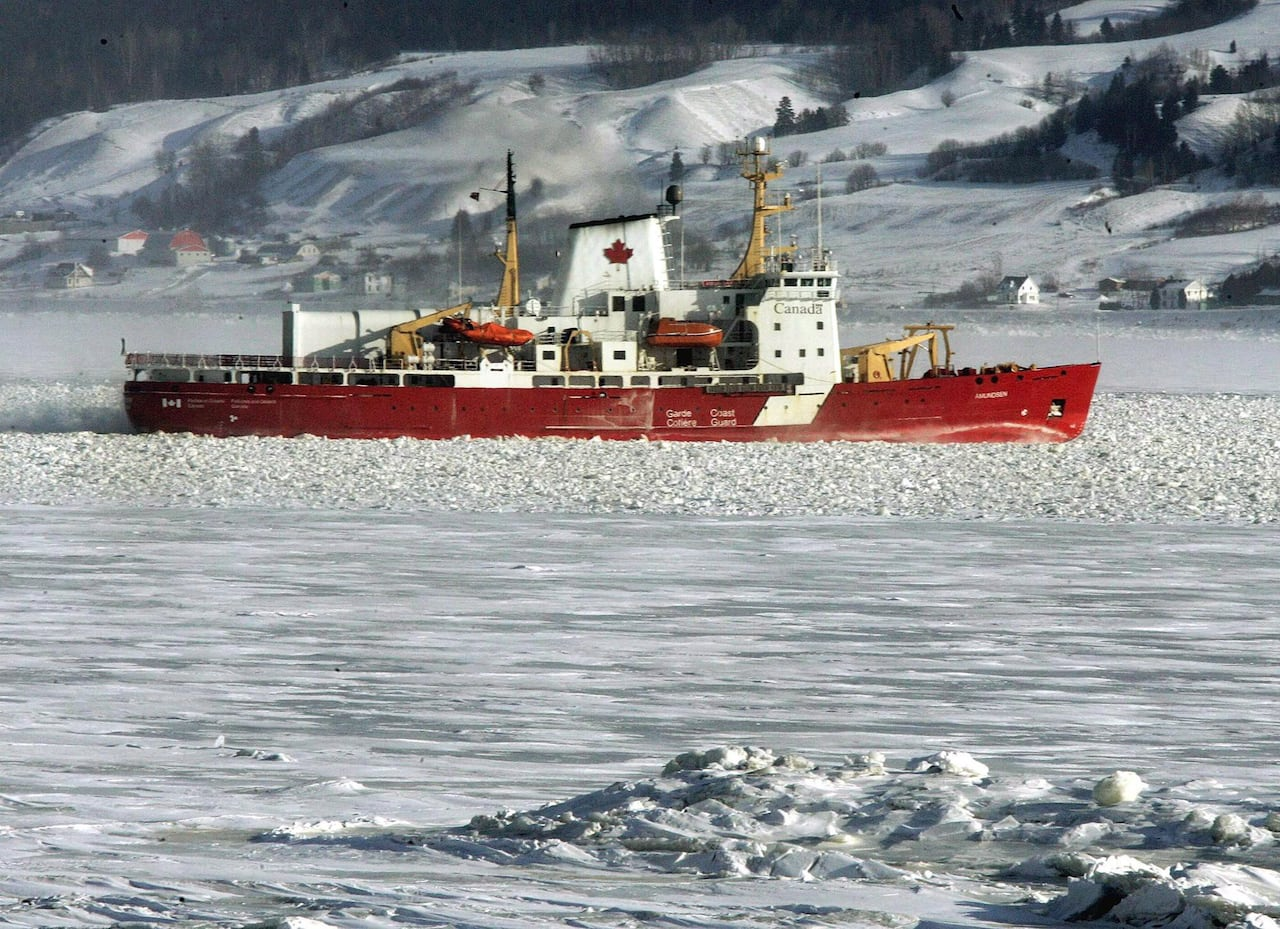 af5dbcec4ea Davie aims to replace Canadian Coast Guard's entire icebreaker fleet | CBC  News