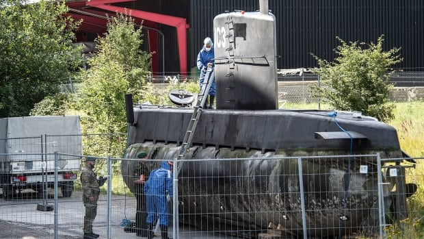 Police believe Peter Madsen may have intentionally sunk his privately-built submarine.