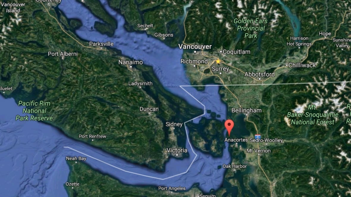 Fish farm releases thousands of Atlantic salmon east of Victoria