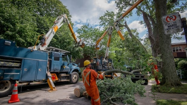 Workers clear a downed tree blocking a street in the Montreal borough of Notre-Dame-de-Grace on Wednesday, August 23, 2017. A severe wind storm that ripped through the area Tuesday August 22 caused tremendous damage to trees, cars and rooftops, and leaving more than 63,000 Hydro-Quebec customers without power.