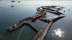 Drone footage of U.S. fish farm collapse