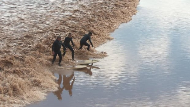 Petitcodiac surfers