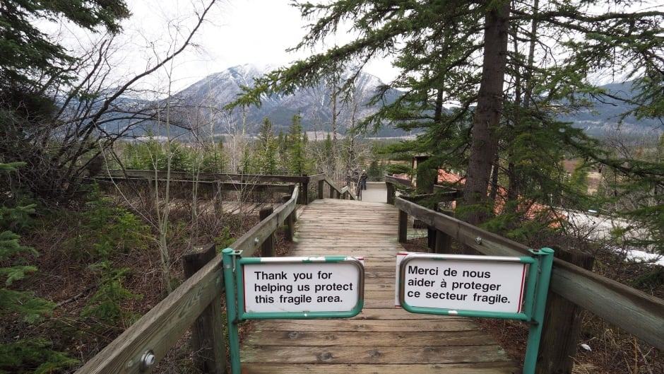 """According to Harvey Locke, Canada is a """"laggard"""" when compared to other countries around the world in terms of ecosystem protection and conservation."""