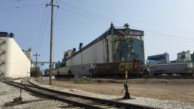 A lineup of grain cars sits outside an elevator at Thunder Bay's waterfront. The two industries are part of the foundation of the city's economy.