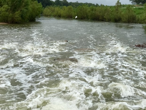 San Antonio River-2