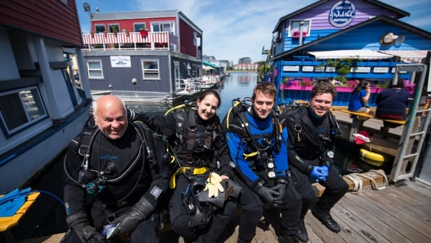 arctic dive team