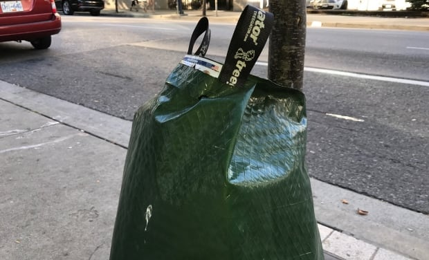 City of Vancouver Vancouver Park Boar tree water bag