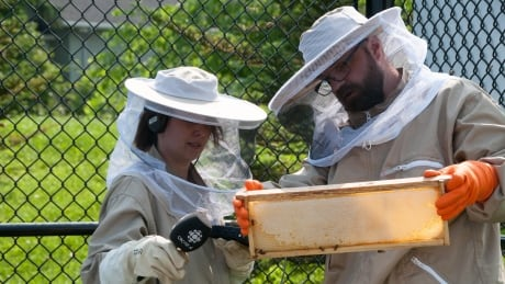 Deborah MacAskill and David Fairbanks Algonquin College bee hives Aug 2017