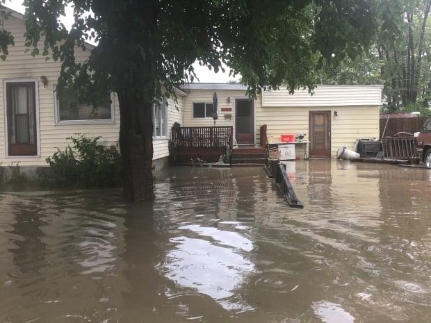 Flooding on Longfellow Avenue in Windsor