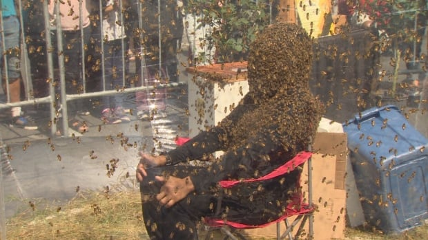 Juan Carlos Noguez Ortiz practised the bee-beard stunt only twice ahead of the Guinness world record attempt on Wednesday.