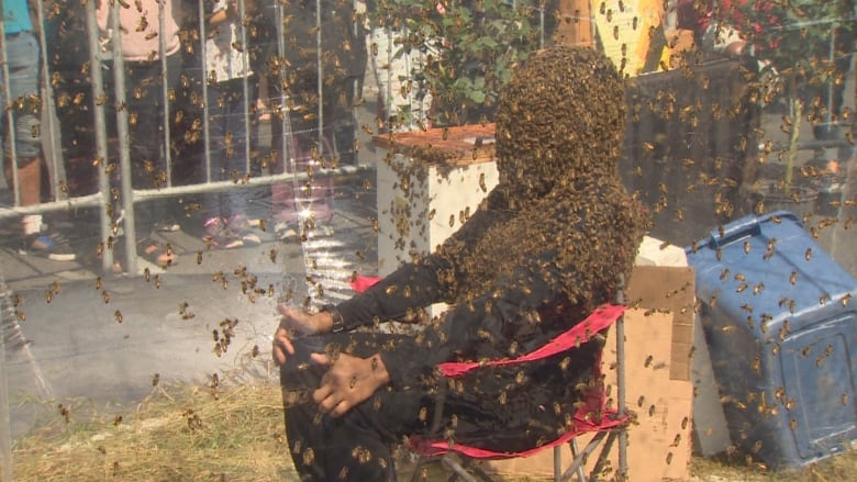 Man sets new Guinness world record for wearing a bee beard