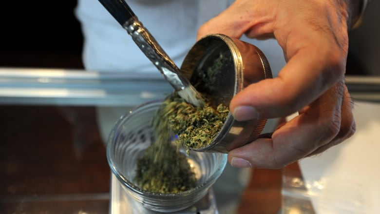 Marijuana is not an all-purpose medical cure   CBC News