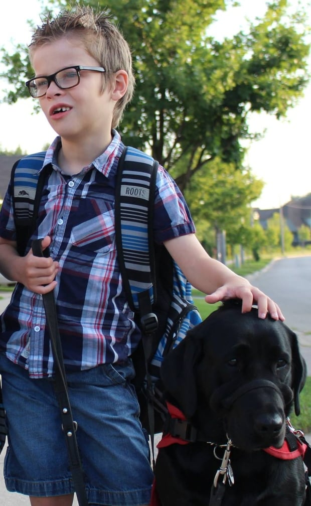 Ontario Human Rights Act Service Dogs