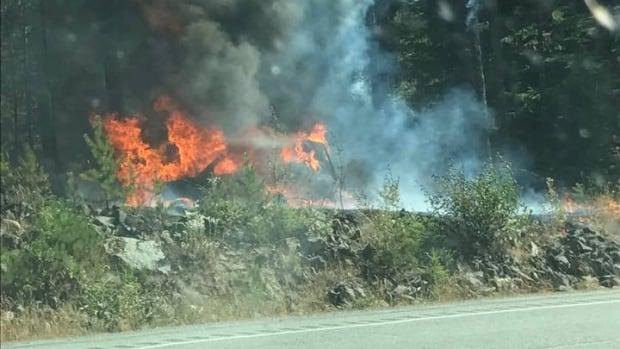 Drive BC says the vehicle fire, which has spread to nearby trees is at Daisy Lake Road.