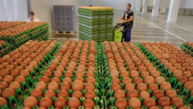 Contaminated eggs discovered in 40 countries as European Union ministers prepare to meet