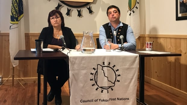 'We can do a lot more, I think, but we need government to come on board to help us,' said Kwanlin Dün Chief Doris Bill, at a Tuesday news conference with Council of Yukon First Nations Grand Chief Peter Johnston.