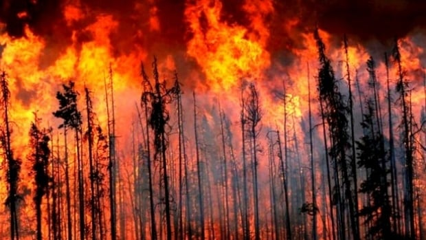 Wildfires in B.C. scorched roughly 1.2 million hectares of land in 2017 and resulted in a lengthy provincial state of emergency.