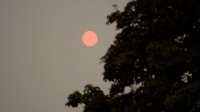 Haze From Wildfire Smoke Created An Eerie Red Sun In