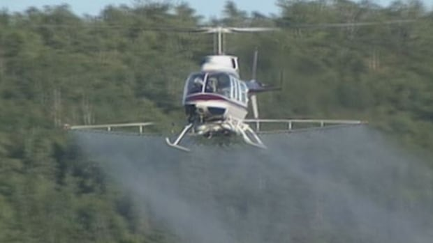 Glyphosate is sprayed for the New Brunswick forest industry to kill maple, oak and other hardwood growth.