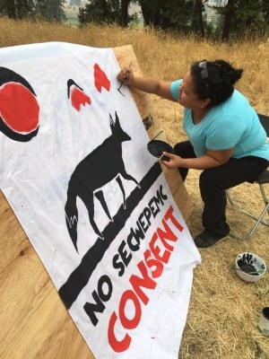 Image result for Tiny Houses Being Built to Block Pipeline in Unceded Secwepemc Territory